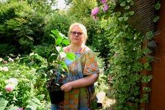 gardener foto de stock
