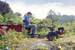 gardener fotos de stock
