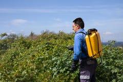 gardener fotografia de stock royalty free