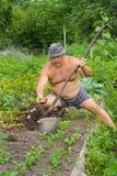 Gardener 8 Stock Photo