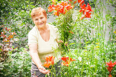 Gardener active senior elderly woman with bouquet (bunch) of fre Royalty Free Stock Photo