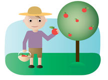 Gardener with apples. Vector illustration. Character gathering apples near the tree Stock Photography