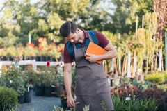 Gardener in apron holding digital tablet in hand. While standing in garden Stock Photography