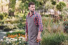 Gardener in apron holding pruning shears in hand while standing in garden royalty free stock photography