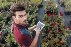 Gardener in apron with tablet in hands looking at camera while working in garden. High angle view of gardener in apron with tablet in hands looking at camera Stock Image