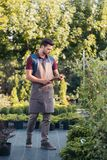 Gardener in apron using tablet while working in garden. Focused gardener in apron using tablet while working in garden Stock Images