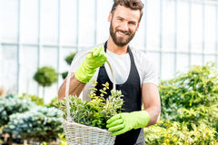 Gardener with a basket full of plants Stock Images
