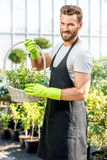 Gardener with a basket full of plants Stock Image