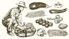 Gardener with a basket of harvested vegetables. Hand drawn set. vector illustration