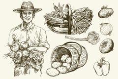Gardener with basket of harvested vegetables. Hand drawn illustratio royalty free illustration