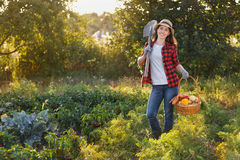 Gardener with basket of vegetables Royalty Free Stock Images