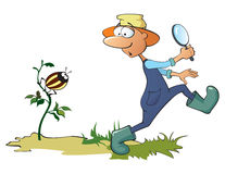 Gardener and beetle Stock Photos