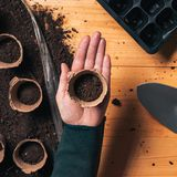 Gardener with biodegradable soil pot container stock image