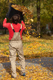 Gardener with bucket full of leaves Stock Photos