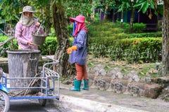 Gardener cleaning clogged pipe garbage Stock Image