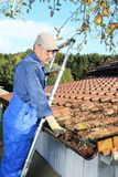 Gardener cleaning a rain gutter from leaves Royalty Free Stock Images