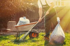 Gardener cleans leaves in the yard. Beside him is a cart with compost. The sun shines brightly stock photos