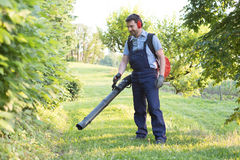 Gardener clearing up the leaves using a leaf blower. Tool stock image