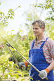 Gardener clipping tree branches at plant nursery Stock Images