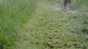 Gardener cut grass. Farmer worker man cut trim mow wet high grass after rain. Water dew drops rise from meadow stock video