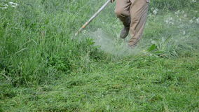 Gardener cut grass. Farmer worker man cut trim wet high grass after rain. Water dew drops rise from meadow stock video footage