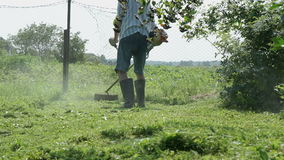 Gardener cuts the grass with a lawnmower outdoors stock footage