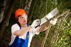 Gardener cutting a branch Royalty Free Stock Photo
