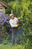 Gardener cutting a garden hedge Royalty Free Stock Photography