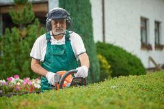 Gardener cutting garden hedge with petrol hedgecutter. Senior male gardener cutting garden hedge with petrol hedge cutter. Professional garden worker wearing in royalty free stock image