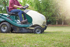 Gardener cutting the grass of a garden seated on a lawn mower Stock Photography
