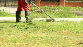 Gardener cutting grass using lawnmower outdoors stock footage