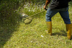 Gardener cutting Lawn. With lawn trimmer string royalty free stock photography
