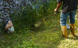 Gardener cutting Lawn Stock Image