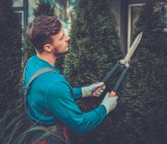 Gardener cutting trees with clippers Stock Photos