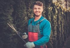 Gardener cutting trees with clippers Stock Photo