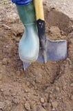 Gardener digging with garden spade royalty free stock images