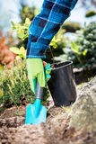 Gardener digging with a shovel. Gardener digging with a shovel, preparing soil for a new plant Stock Photo