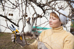 Gardener doing maintenance work Royalty Free Stock Image
