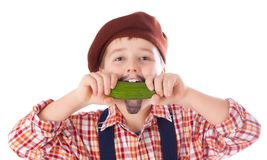 Gardener eating green cucumber Stock Photos