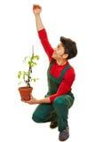 Gardener estimating growth of plant. Gardener estimating growth of tomato plant in his hand Royalty Free Stock Photos