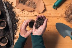 Gardener filling biodegradable soil pot container royalty free stock images
