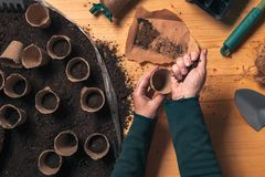 Gardener filling biodegradable soil pot container stock photography