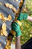 Gardener fixing rain gutter Stock Photography