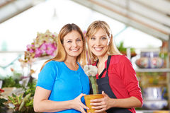 Gardener and florist with cactus in nursery Royalty Free Stock Images