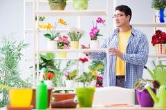 The gardener florist working in a flower shop with house plants. Gardener florist working in a flower shop with house plants Stock Photos