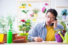 The gardener florist working in a flower shop with house plants. Gardener florist working in a flower shop with house plants Royalty Free Stock Photo