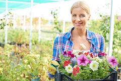 Gardener with flowers stock images