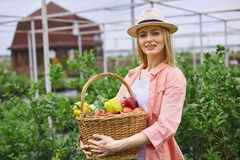 Gardener with fresh harvest Royalty Free Stock Images