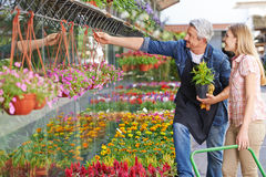 Gardener in front of nursery shop helping woman Royalty Free Stock Photo