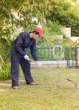 Gardener with garden tools at work Stock Image